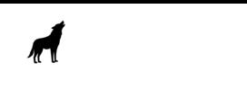 Professionelle Logogestaltung bei Ihrer Webagentur in Bad Homburg
